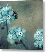 Forget Me Not 01 - S22dt06 Metal Print by Variance Collections