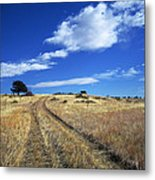 Forgotten Road Metal Print by Julie Magers Soulen