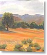 Fort Collins Foothills Metal Print by Marcy Silverstein