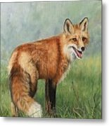 Fox  Metal Print by David Stribbling