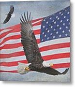 Freedom Flight Metal Print by Angie Vogel