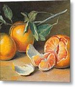 Fresh Tangerine Slices Metal Print by Theresa Shelton