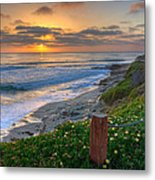 From Above II Metal Print by Peter Tellone