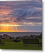 Front Row Seats Metal Print by Mary Amerman