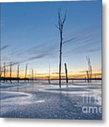 Frost Bite Metal Print by Michael Ver Sprill