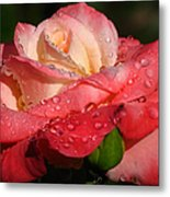 Full Bloom Metal Print by Juergen Roth