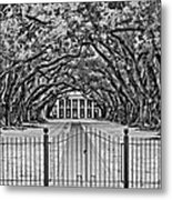 Gateway To The Old South Bw Metal Print by Steve Harrington