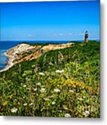 Gay Head Light And Cliffs Metal Print by Mark Miller