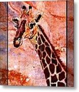 Gentle Giraffe Metal Print by Sylvie Heasman