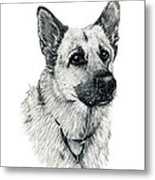 German Shepherd Metal Print by Terri Mills