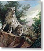 Glamorous Friendship- Snow Leopards Metal Print by Svitozar Nenyuk