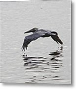 Glide Metal Print by Charles Warren