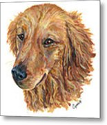 Golden Retriever Metal Print by Barb Capeletti