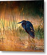 Goliath Heron With Sunrise Over Misty River Metal Print by Johan Swanepoel