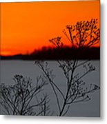 Gone Is The Sun Metal Print by Rachel Cohen