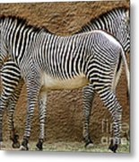 Got Your Back Metal Print by Dan Holm
