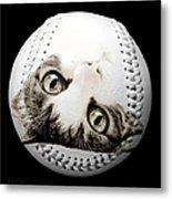 Grand Kitty Cuteness Baseball Square B W Metal Print by Andee Design