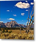 Grand Tenton Overlook Metal Print by Robert Bales