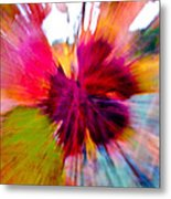 Grape Vine Burst Metal Print by Bill Gallagher
