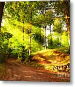 Green Trees Metal Print by Boon Mee