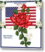 Happy Birthday America Metal Print by Anne Norskog