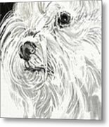 Harley The Maltese Metal Print by Linda Minkowski