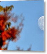 Harvest Moon Metal Print by Karen M Scovill