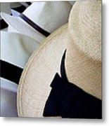 Hats Off To You Metal Print by Lainie Wrightson
