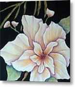 Hawaiian Pua Metal Print by Pamela Allegretto