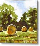 Hay Bales At Noontime  Metal Print by Kip DeVore