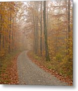 Hazy Forest In Autumn Metal Print by Matthias Hauser
