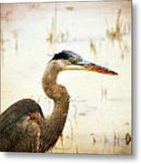 Heron Metal Print by Marty Koch