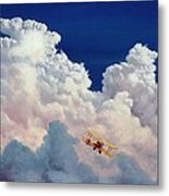 High In The Halls Of Freedom Metal Print by Michael Swanson