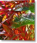 Highlights  Metal Print by Gayle Price Thomas