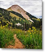 Hiking In La Sal Metal Print by Adam Romanowicz
