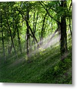 Hope Lights Eternal - Blue Ridge Parkway I Metal Print by Dan Carmichael