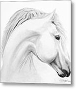 Horse Metal Print by Don Medina