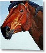 Horse Head Metal Print by Mike Jory