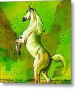 Horse Paintings 010 Metal Print by Catf