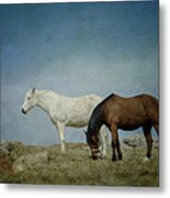 Horses On A Hill Metal Print by Kathy Jennings