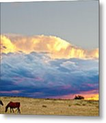 Horses On The Storm Metal Print by James BO  Insogna