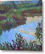 Huckleberry Line Trail Rain Pond Metal Print by Kendall Kessler