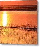 Hunting Island Tidal Marsh Metal Print by Michael Weeks