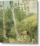 Hut In The Jungle Circa 1816 Metal Print by Aged Pixel