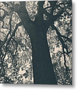 I Can't Describe Metal Print by Laurie Search