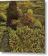 I Filari In Autunno Metal Print by Guido Borelli