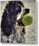 I'm Ready To Play Metal Print by Benanne Stiens