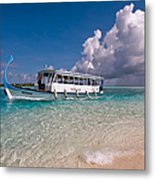 In Harmony With Nature. Maldives Metal Print by Jenny Rainbow