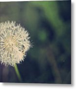 In The Afterglow Metal Print by Laurie Search