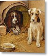 In The Dog House Metal Print by Samuel Fulton